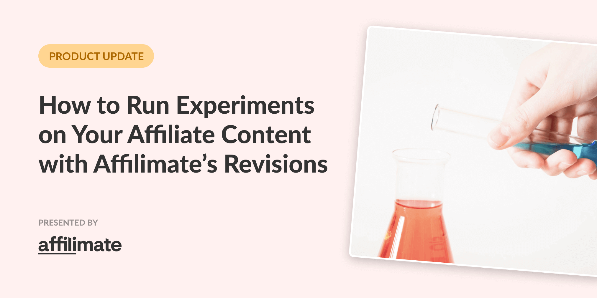 Revisions in Affilimate: How to track your affiliate website experiments